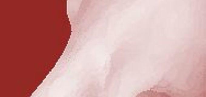 Spadá vyšetření prsů do gynekologické prohlídky?