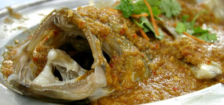 Mořské ryby mohou těhotenství pomoci, i ublížit