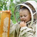 Nebezpečí hmyzího bodnutí