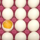Které vajíčko je to pravé?
