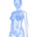 Ovulační testy řeknou, kdy je nejlepší doba k otěhotnění