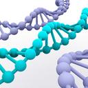 Porovnání nabídky neinvazivních prenatálních testů