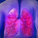 Pneumologové znovu otevírají ambulance: Pacientům s těžkou plicní nemocí už nikdo léčbu nevysadí