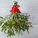 Jmelí do domu přináší štěstí nejen o Vánocích