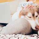 Na co se nás ptáte: Je pes v posteli hrozbou pro dítě?