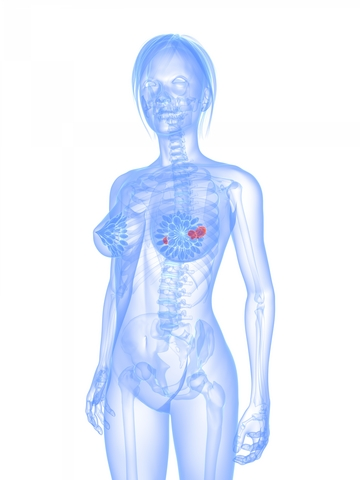 Onemocnění prsu