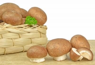 Pozor na otravu houbami! Hrozí i dětem