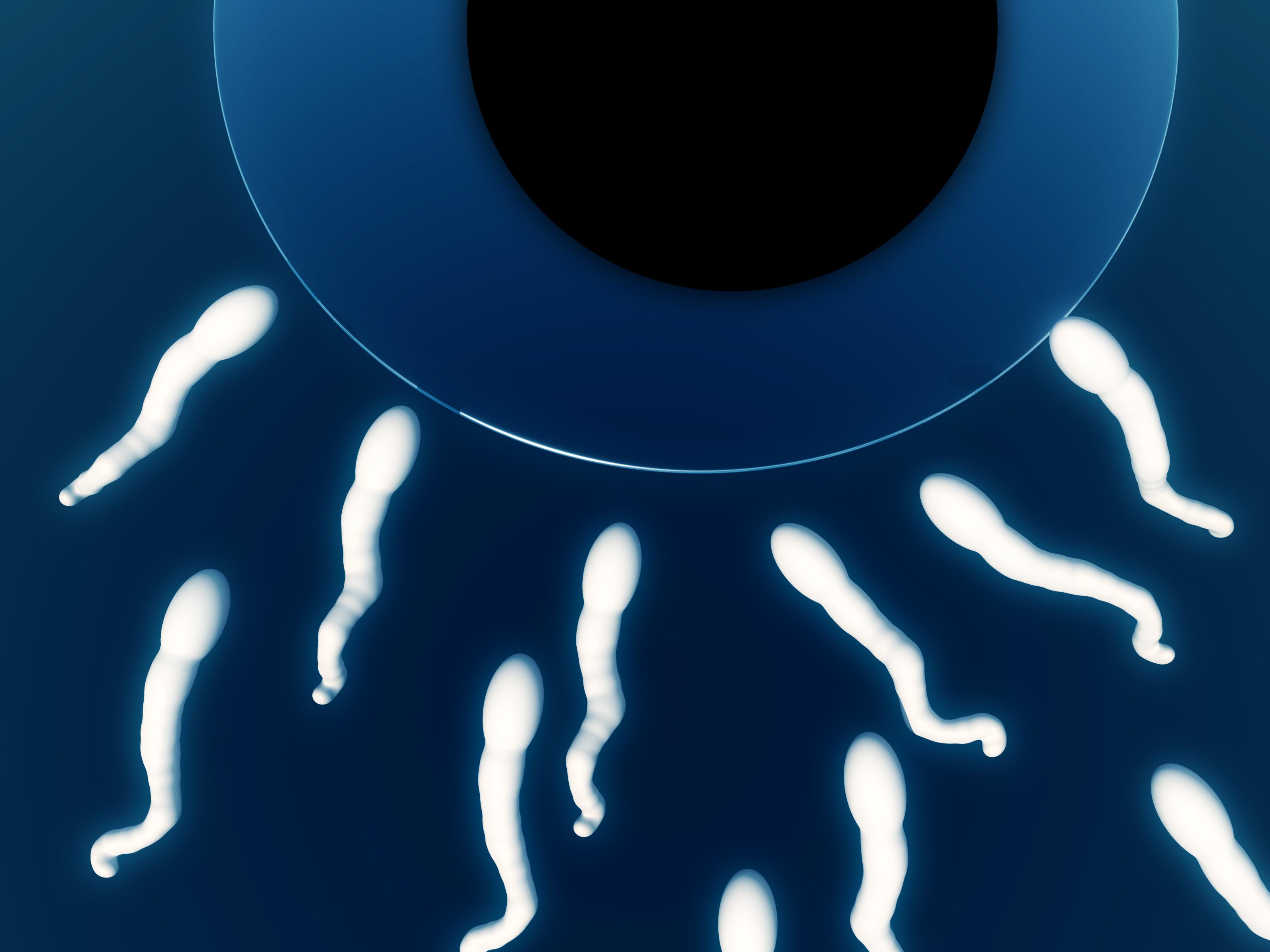 LAISS – když hlavní roli při výběru spermií hraje laser