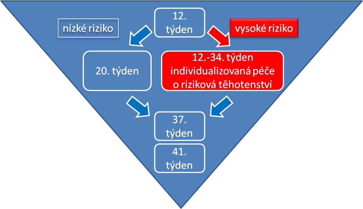 pyramida prenatální péče - budoucnost