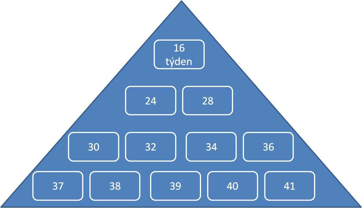 pyramida prenatální péče - minulost